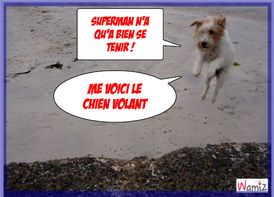 Superdog !!!, lolcats réalisé sur Wamiz
