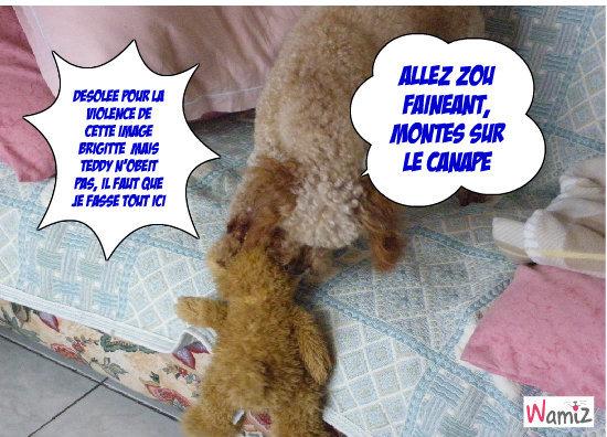 Capucine and Teddy, lolcats réalisé sur Wamiz
