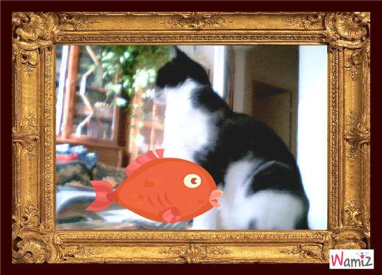 fish and cat, lolcats réalisé sur Wamiz
