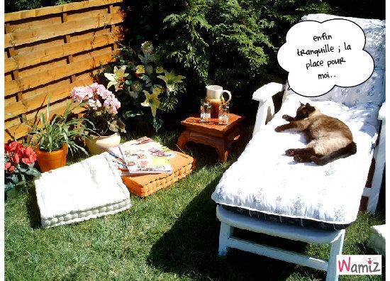 Relax !, lolcats réalisé sur Wamiz
