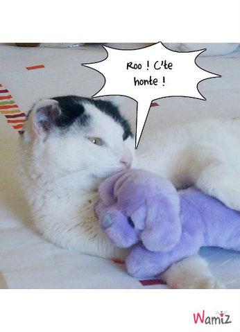 Paco & son doudou , lolcats réalisé sur Wamiz
