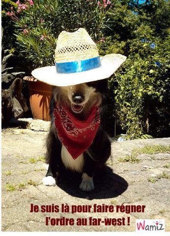COW-BOY, lolcats réalisé sur Wamiz
