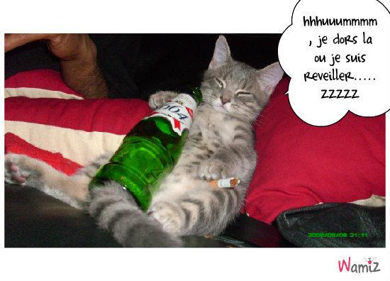 Alcool a consome avec moderation..., lolcats réalisé sur Wamiz