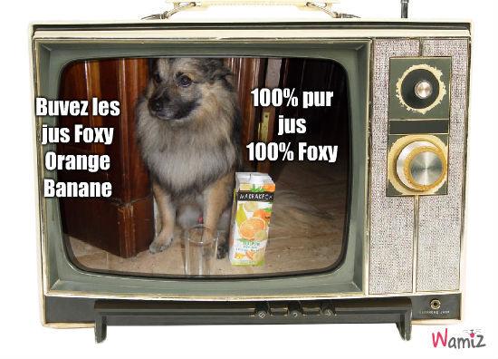 Publicité Jus Foxy Orange Banane, lolcats réalisé sur Wamiz