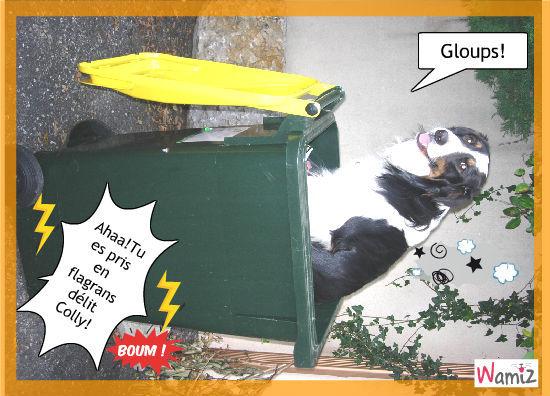 colly dans la poubellecolly dans la poubelle, lolcats réalisé sur Wamiz