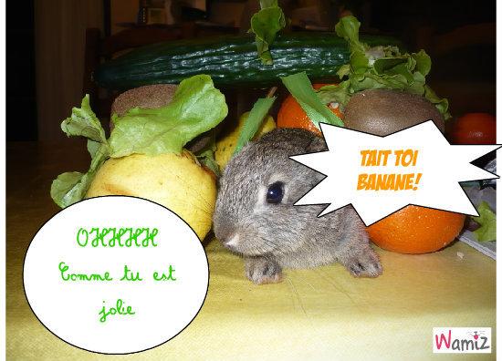 La lapine aux fruits!!!, lolcats réalisé sur Wamiz