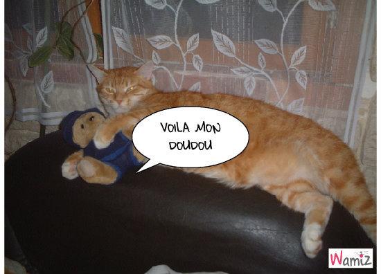 enzo (doudou) avec son doudou, lolcats réalisé sur Wamiz