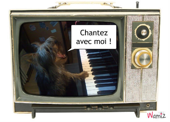 Poulet chante, lolcats réalisé sur Wamiz
