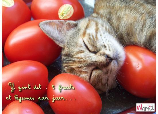 Pause légumes..., lolcats réalisé sur Wamiz