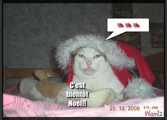 NOEL!!!NOEL!!!, lolcats réalisé sur Wamiz