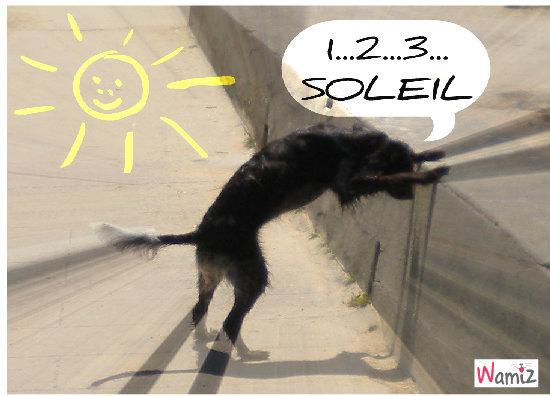 1-2-3 Soleil !!!, lolcats réalisé sur Wamiz
