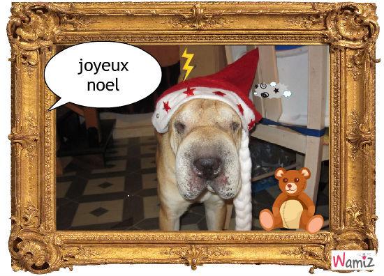 joyeux noel 2010, lolcats réalisé sur Wamiz
