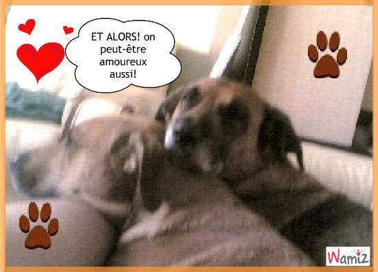 Nous aussi on est amoureux!!, lolcats réalisé sur Wamiz