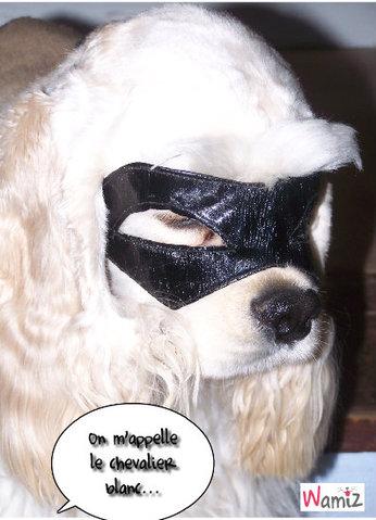 doctor house le vengeur masqué, lolcats réalisé sur Wamiz