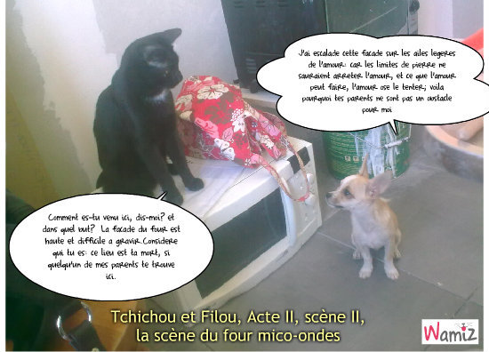 Tchichou et Filou, Acte II, scène II, lolcats réalisé sur Wamiz