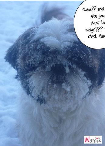 Chayann en bonhomme de neige, lolcats réalisé sur Wamiz