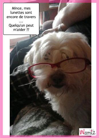 Vanille est des lunettes, lolcats réalisé sur Wamiz