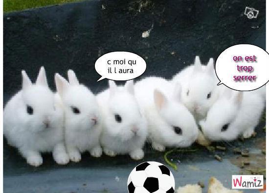 les ptit lapin au foot, lolcats réalisé sur Wamiz