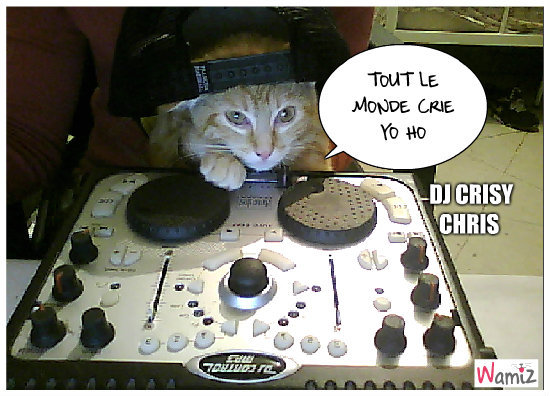 DJ CRISY CHRIS, lolcats réalisé sur Wamiz