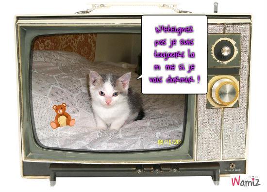 Star de la télé, lolcats réalisé sur Wamiz
