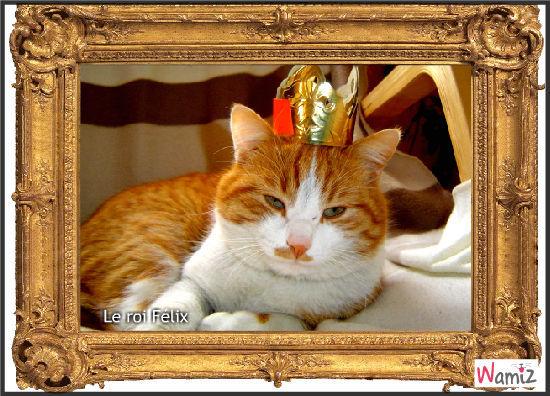 le roi, lolcats réalisé sur Wamiz
