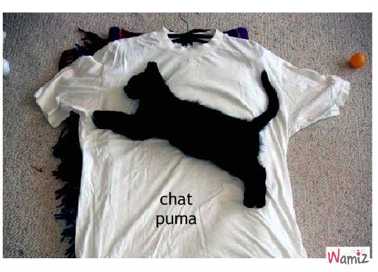 puma, lolcats réalisé sur Wamiz