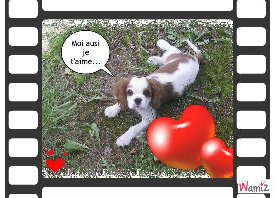 Un amour!!!, lolcats réalisé sur Wamiz