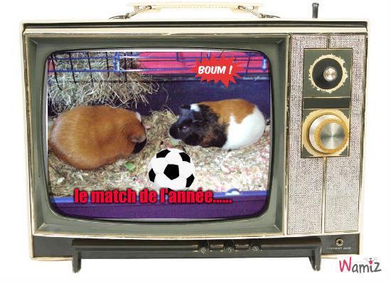 enfin du vrai football !!, lolcats réalisé sur Wamiz