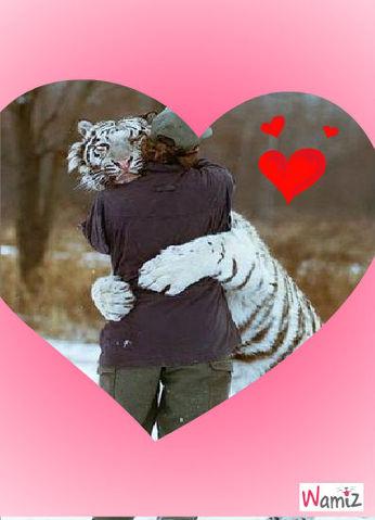 ahhhhhhh l amour, lolcats réalisé sur Wamiz