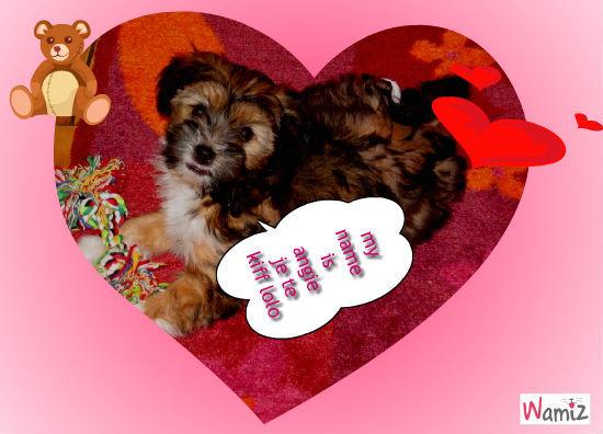 ma chienne, lolcats réalisé sur Wamiz