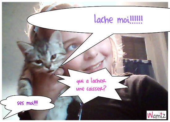 le chat qui parle!!!, lolcats réalisé sur Wamiz