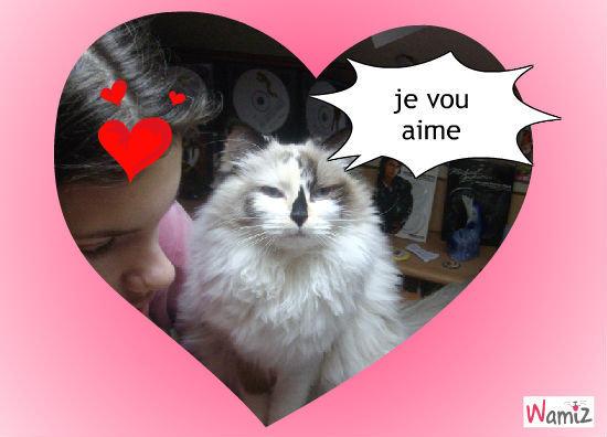 mon chat lisa , lolcats réalisé sur Wamiz