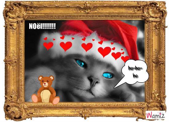 chat noiël, lolcats réalisé sur Wamiz