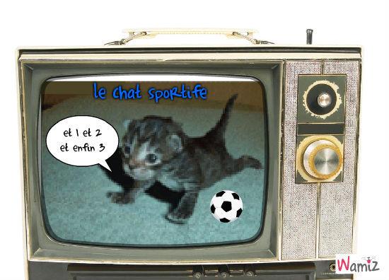 le chat sportife, lolcats réalisé sur Wamiz
