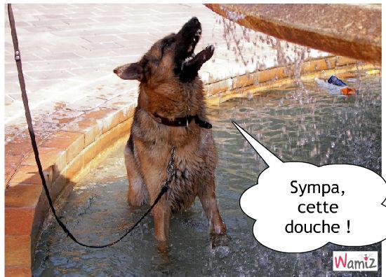 J'adore l'eau, en doutez-vous ?, lolcats réalisé sur Wamiz
