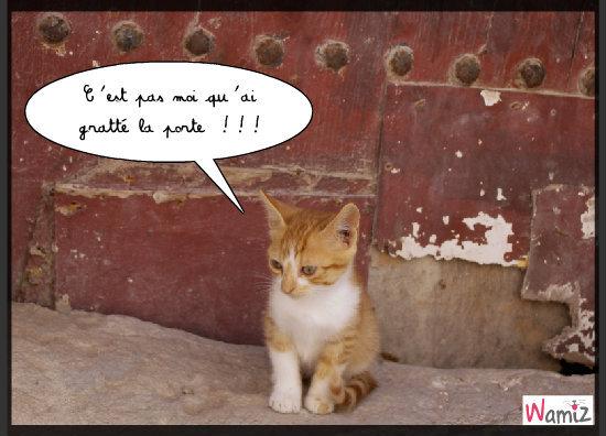 Léo au coin !, lolcats réalisé sur Wamiz