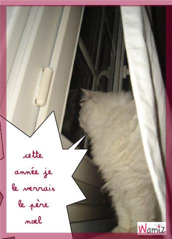 le chat de noel, lolcats réalisé sur Wamiz
