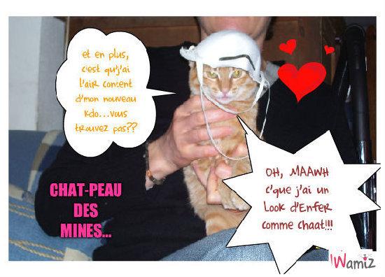 Petit chat des mines !, lolcats réalisé sur Wamiz