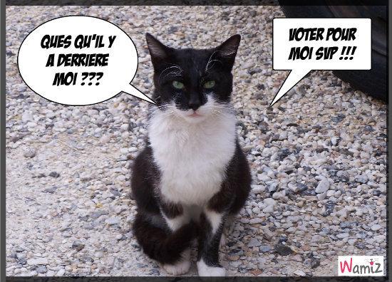 Filou svp voter pour lui, il vous remerciera !! , lolcats réalisé sur Wamiz