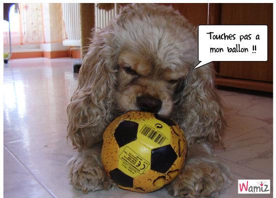 Zoé et son ballon préféré !!, lolcats réalisé sur Wamiz