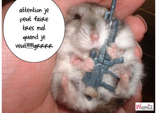 le militaire hamster, lolcats réalisé sur Wamiz