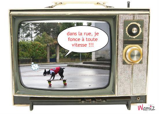 le chien et le skate, lolcats réalisé sur Wamiz