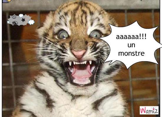 aaa!!!!, lolcats réalisé sur Wamiz