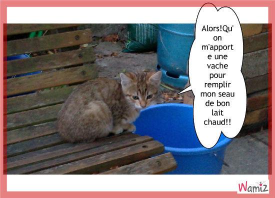Le chat pot-au-lait., lolcats réalisé sur Wamiz