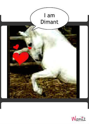 Diamant, lolcats réalisé sur Wamiz