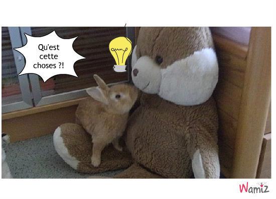 le nounours et le lapin, lolcats réalisé sur Wamiz