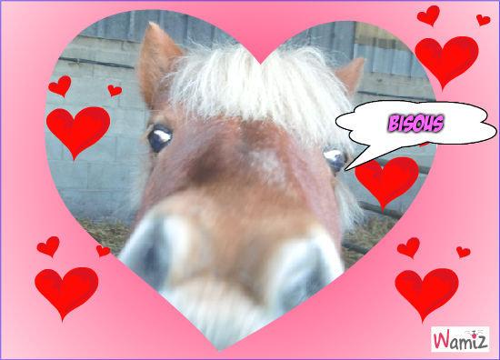 poney d'amour, lolcats réalisé sur Wamiz
