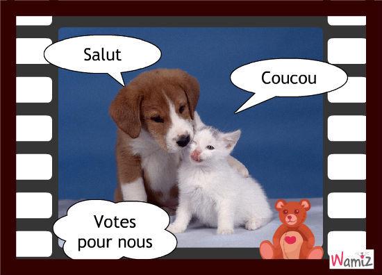 votes pour nous, lolcats réalisé sur Wamiz