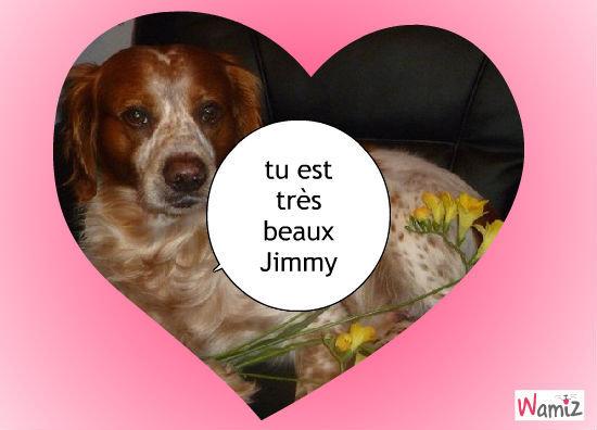 Jimmy , lolcats réalisé sur Wamiz