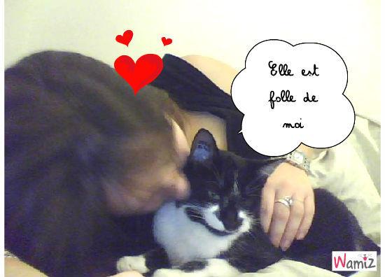 L'amour!, lolcats réalisé sur Wamiz